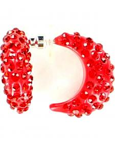 Blazin Roxx Crystal Hoop Earrings