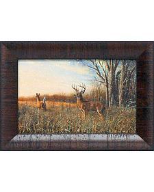 """Jim Hansel """"Breaking Cover"""" Framed Wall Art - 15"""" x 11"""""""