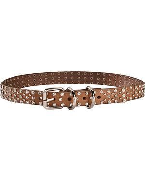 Blazin Roxx Studded Rhinestone Dog Collar - S-XL