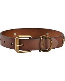 Shotgun Shell Dog Collar - XS-XL